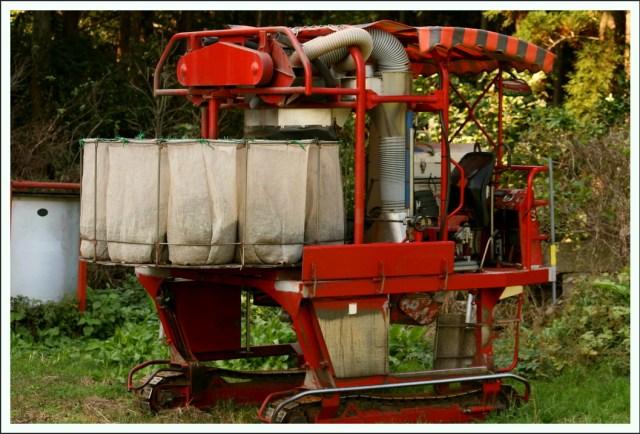 Tee-Pflückmaschine Tea Harvest Machine Maschine Tee Agrikultur Anbau agriculture
