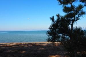 琵琶湖岸で空撮撮影 滋賀県長浜市のドローン空撮滋賀