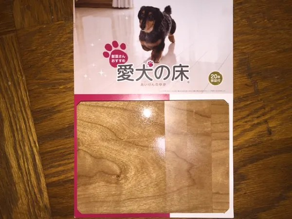 愛犬の床のサンプル
