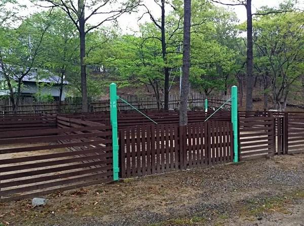 栃木県のドッグフリーサイトがあるキャンプ場「那須高原オートキャンプ場」