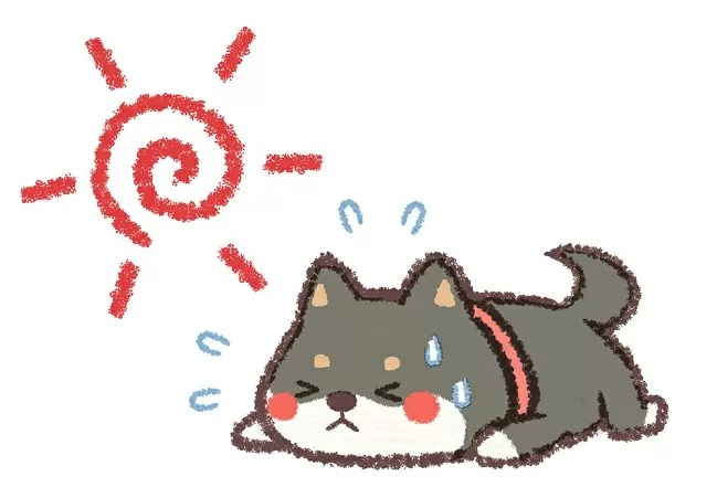 犬熱中症に気を付けてキャンプをしよう
