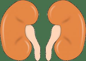 腰の張り感の原因