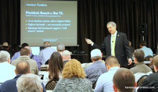 Mike Brandley's auction verdicts class