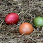 FREE Easter Egg Hunt in Bonner Springs
