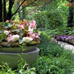 Overland Park Arboretum & Botanical Gardens discounts and free admission