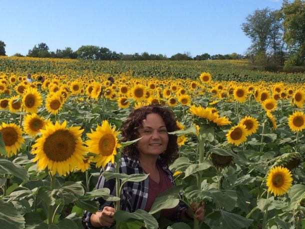 Sunflower fields near Kansas City - woman standing in field of blooming sunflowers