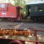 Halloween Train at the Belton, Grandview and Kansas City Railroad Co.