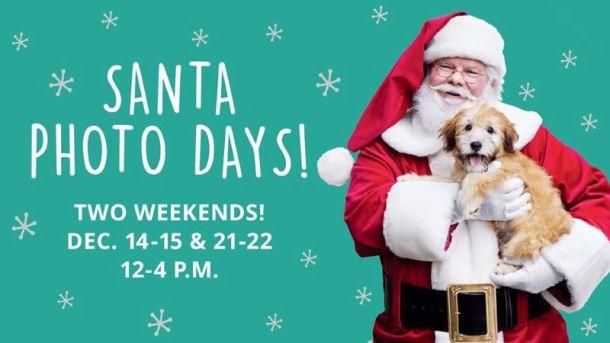 Photos with Santa in Kansas City - Santa holding a puppy