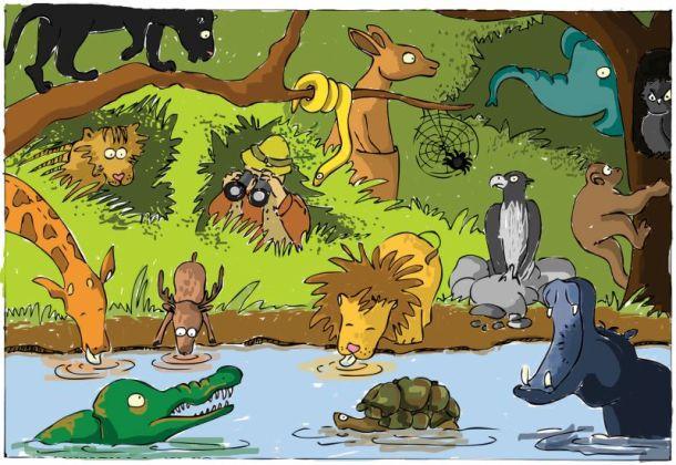Kansas City zoo events - jungle full of animals