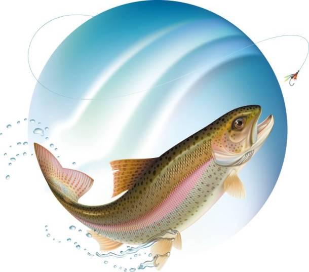 Free fishing days in Kansas and Missouri - image of a bass fish