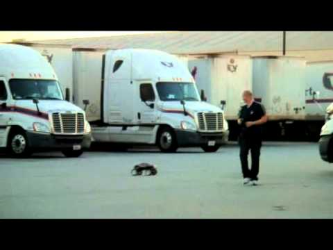 T Maxx jumping on asphalt over semi-truck tires and breaking