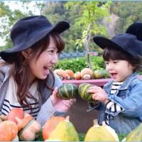 親子でかぼちゃを取っている様子の画像