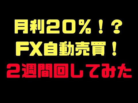 【月利20%】FX自動売買ツールを2週間動かしてみた!結果発表!