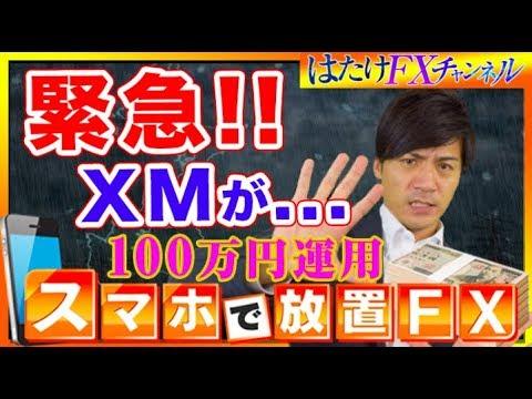 【緊急トピックス!!】XMが音をあげる!?現在の自動売買の状況とこれからの対策!【FX自動売買ツール 100万円&10万円口座 検証】
