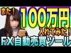 月利20%!このFX自動売買ツールにも100万円入れて運用してみた!