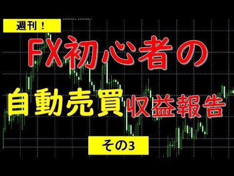 【週刊】FX初心者の自動売買!収益報告~3週目~【システム管理料が敵】