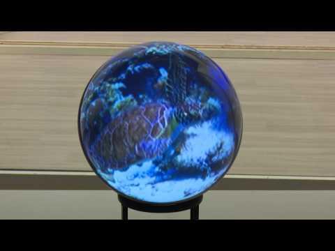 好奇心を刺激するリアル映像!学習ツールとして使える投影機