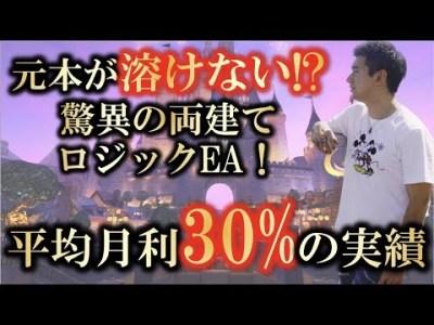 【元本溶けない!?】月利30%~!驚異の両建てロジックFX自動売買【システムF】