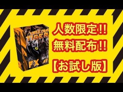 【FX自動売買システム #限定無料配布 ‼ お試し版】