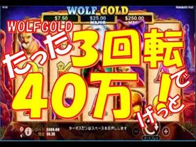 稼げる!たった3回転で40万ゲット!ウルフゴールドのパンチ力は井上尚弥以上だぜ!!