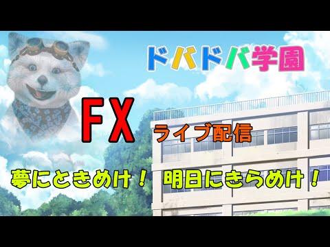 【FXライブ】令和2年2月12日火曜日