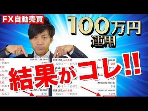 FX自動売買ツールのたった1日で稼ぐ金額がすごい件!100万円運用だけじゃなく初心者向けに10万円口座も検証結果報告中!