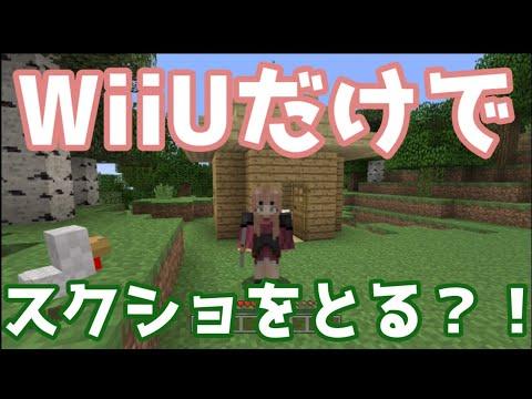 【WiiU】WiiU画像投稿ツールを使ってみた【マイクラ】【スクショ】
