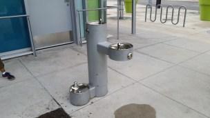 Multi purpose water fountain