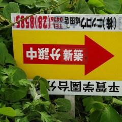Japan fail (2)