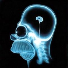 Sin nada dentro del cerebro