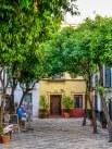 Barrio de Santa Cruz-6