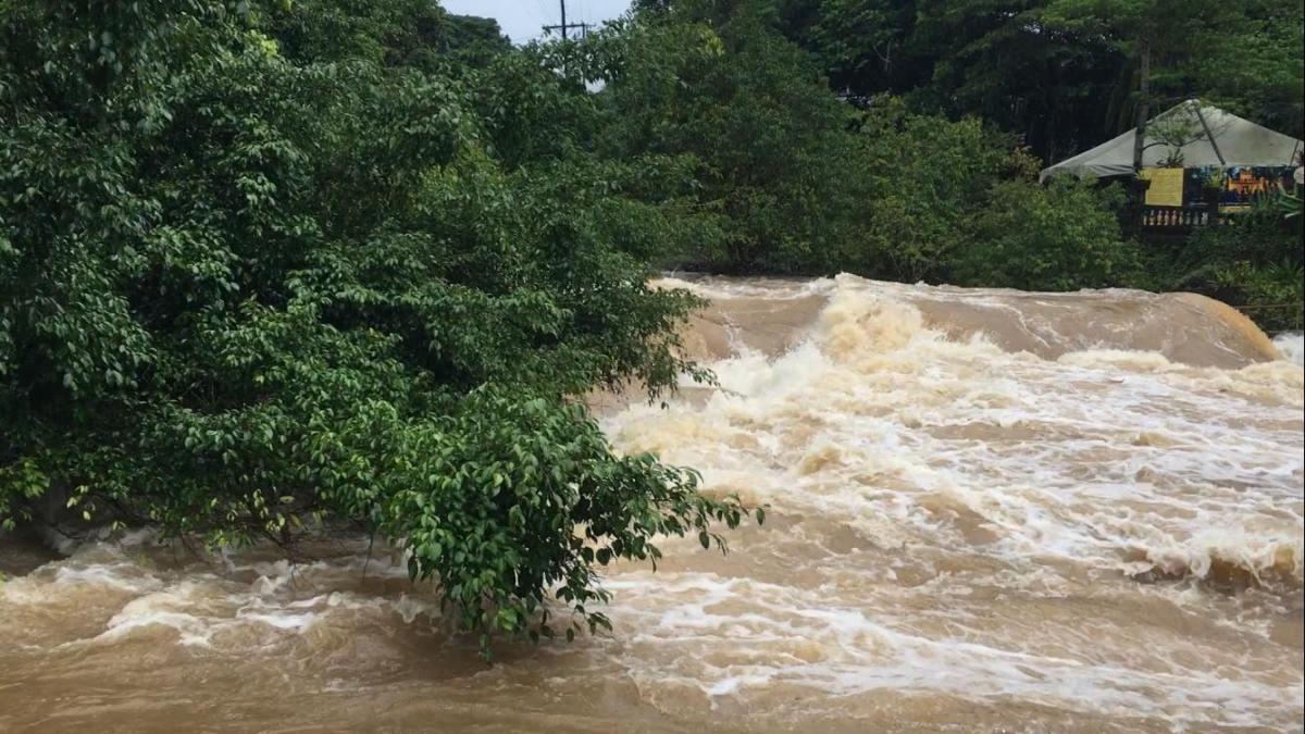 ケアンズ洪水、こんなにスゴかった!
