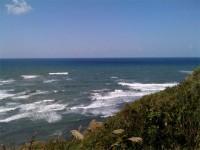 久しぶりの海岸線♪
