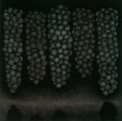 Five bunches of bluegrapes・5房の青い葡萄 Mezzotint・three plates three colors・Gampi-Paper(Mino) メゾチント・3版3色・雁皮刷り・美濃和紙 image size H11.3cmxW11.3cm ed.30 2013