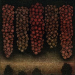 Five bunches of red grapes・5房の赤い葡萄 Mezzotint・three plates three colors・Gampi-Paper(Mino) メゾチント・3版3色・雁皮刷り・美濃和紙 image size H11.3cmxW11.3cm ed.30 2013