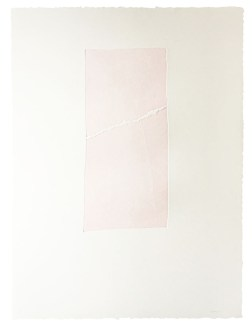 Epigraph-Sakura II・碑文-淡桜 II Etching・Aquatint・BFK Rives エッチング・アクアチント・BFK紙 image size H38.5cmxW18cm ed.12 2016