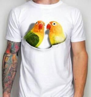 kaos burung ocehan, kaos lovebird, klub burung lovebird