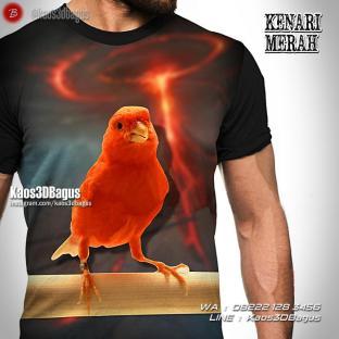 Kaos KENARI, Kaos3D, Burung Kenari Merah, Kaos Burung Kenari, Kaos Gambar Burung, Kicau Mania