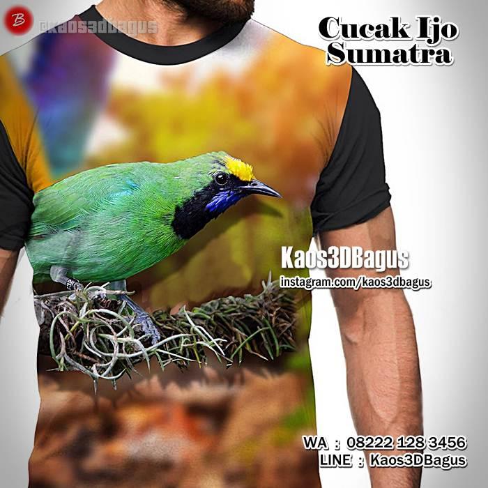 Kaos Burung Berkicau  Kaos 3D Gambar Burung  Kaos Kicau