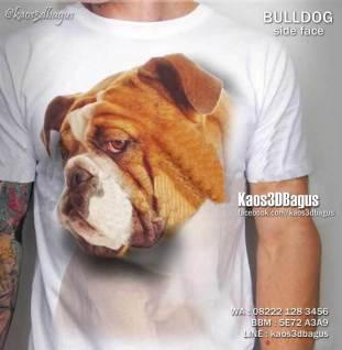 Kaos 3D Anjing Bulldog, Kaos Gambar BULLDOG, Kaos PUPPY LOVER, Kaos Komunitas BULLDOG, Kaos3D, Kaos 3D Bagus, Umakuka