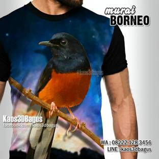 Kaos3D, Gambar Murai Borneo, Kaos 3 Dimensi, Kaos Gambar Murai Batu