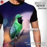Kaos Gambar Burung, Cucak Ijo Ngentrok, Gacor, Kaos3D
