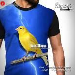 Kaos Burung Kenari, Kaos Klub Kenari, Kenari Fighter