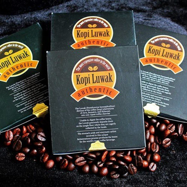 kado untuk sahabat kopi luwak bubuk liberika