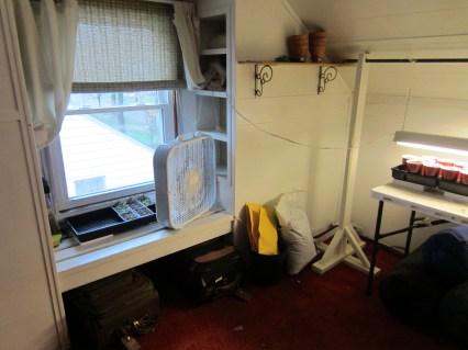 Attic window area