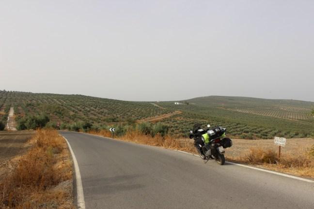 Hier macht das Motorradfahren echt Spaß!