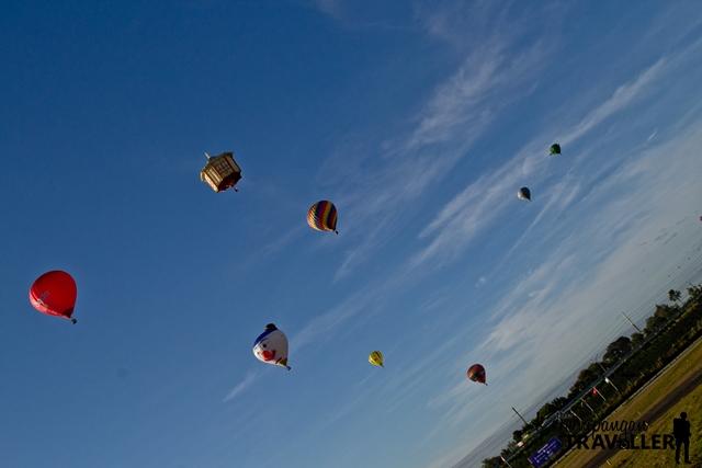 Balloons afloat at the 21st Philippine International Hot Air Balloon Fiesta
