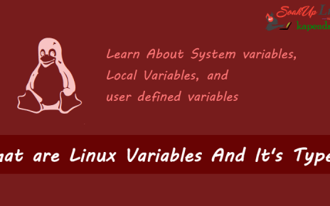 What are Linux Variables And It's Types?