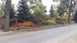 Grupa Kapias - barwy jesieni