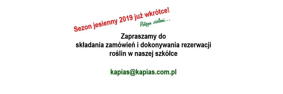 Grupa Kapias - sezon jesień 2019